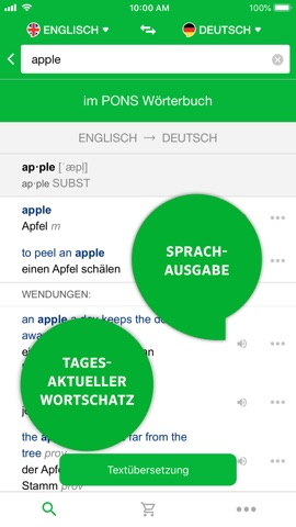 pons textüberstzer