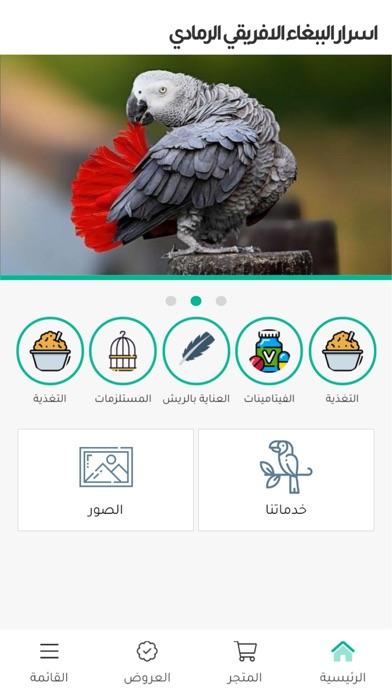 اسرار الببغاء الافريقي الرمادي Screenshot