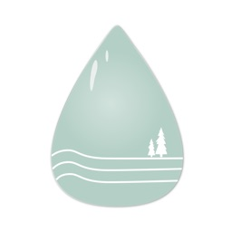 Forest Water - Daily Reminder