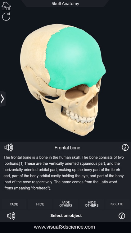 My Skull Anatomy screenshot-5