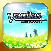 Codes for RPG Vanitas Hack