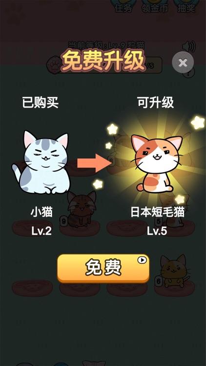 我的小猫-花花 screenshot-3