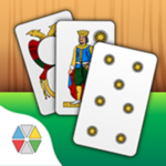 bak inc milano giochi di carte