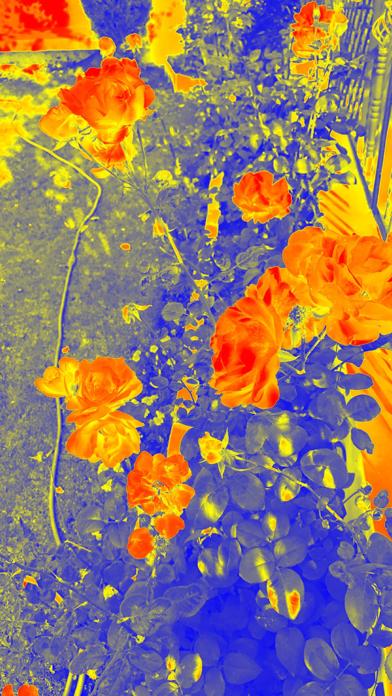 Thermal Heat - Live Cameraのおすすめ画像4
