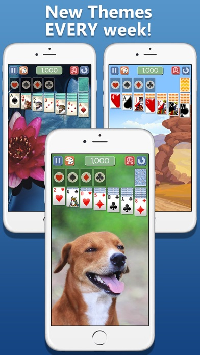 Screenshot for Solitaire Deluxe® 2 in Jordan App Store