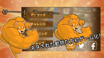 Fight of Animals-Solo... screenshot1