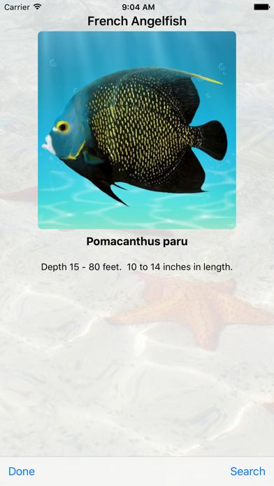 Cayman Snorkelのおすすめ画像2