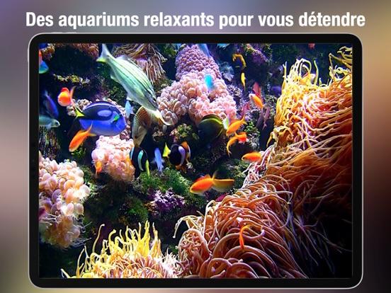 Screenshot #5 pour Aquarium Live HD +