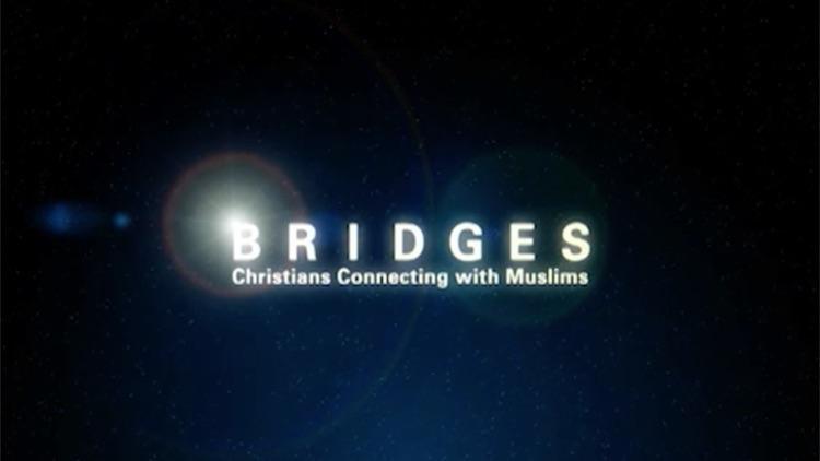 Bridges Study screenshot-4