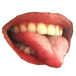Fun Mouth