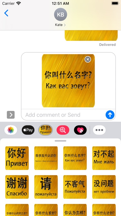 Chinese Russian Sticker screenshot-4