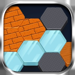 One-Block Fun Puzzle Hexagon