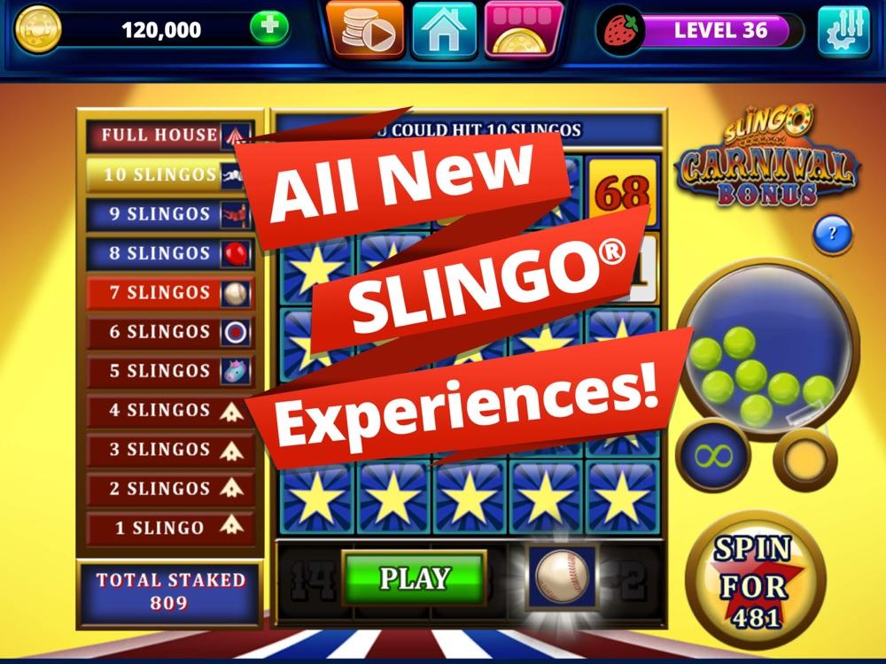 Bingo Slots App