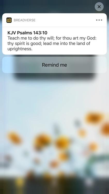 BreadVerse: Daily Bible Verse screenshot-8