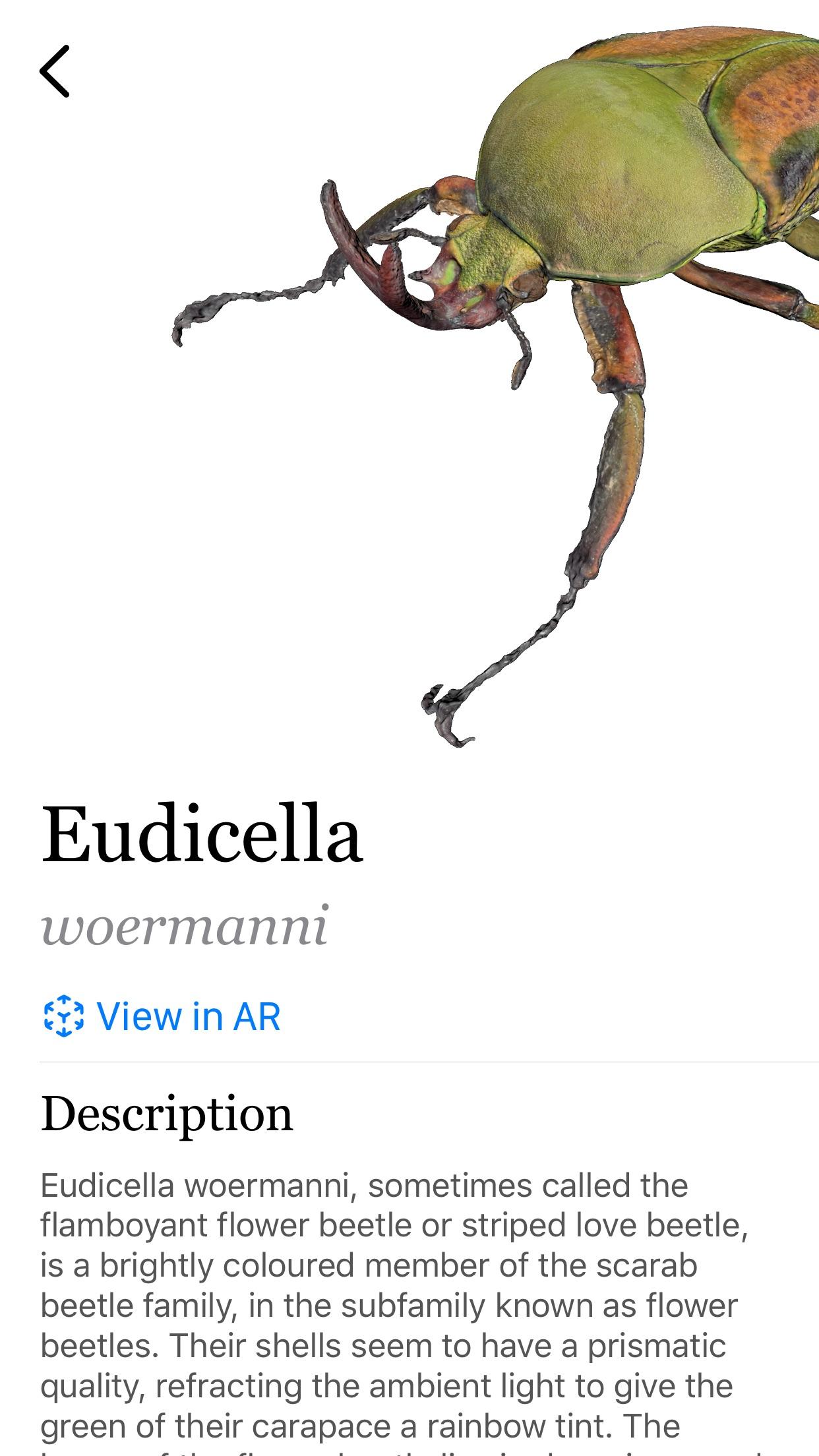 Screenshot do app Insecta: