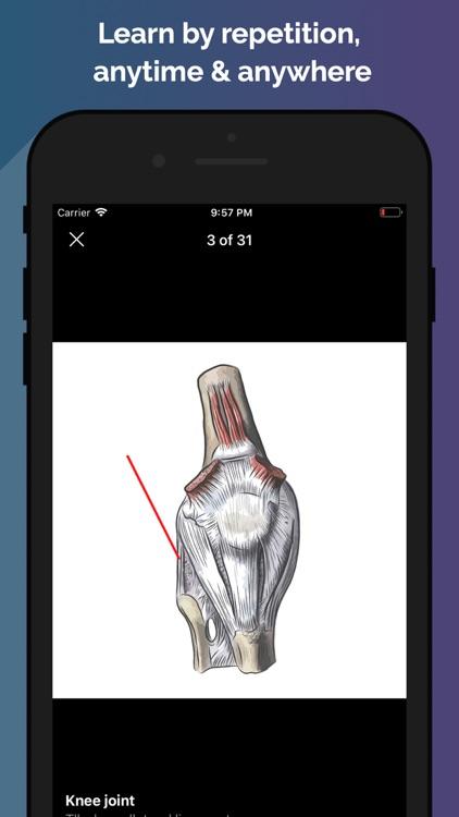 Easy Anatomy - Atlas & Quizzes screenshot-7