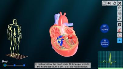 Heart - An incredible pump screenshot 7