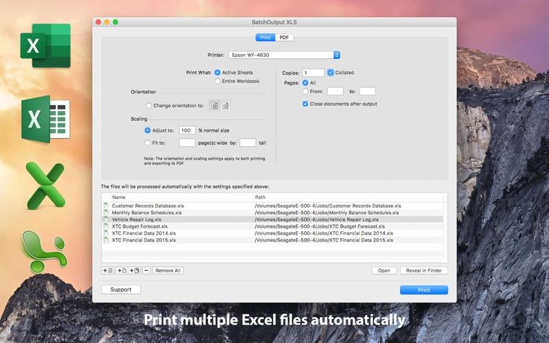 BatchOutput XLS for Excel Screenshots
