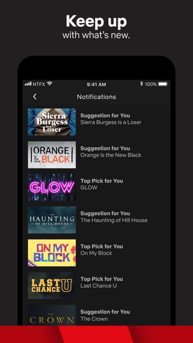 Netflix app image