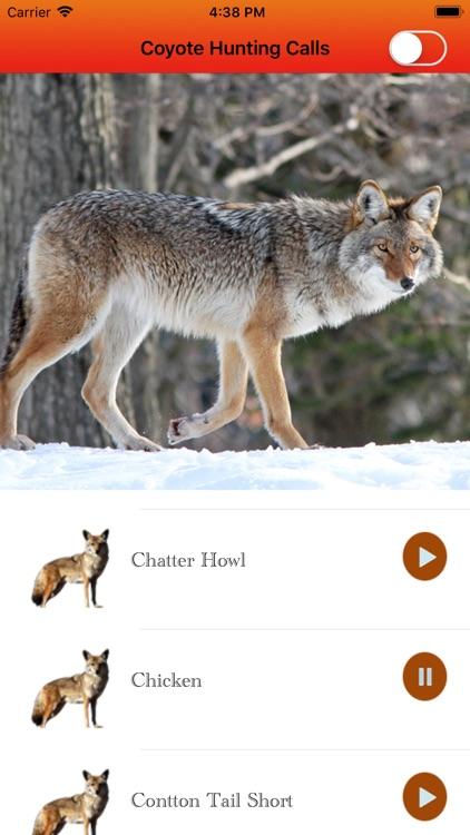 Coyote Hunting Calls Full