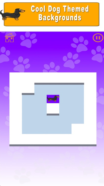 Dachshund Maze Game Doxie Game screenshot-3