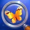 Tiny Things: hidden objects