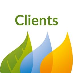 Iberdrola Clients