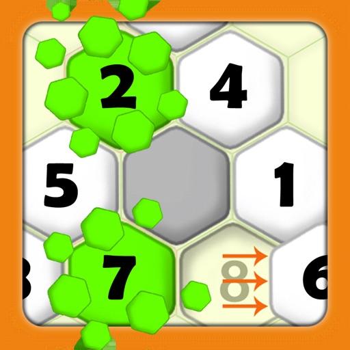 Hexa Puzzle Sort - Brain Game