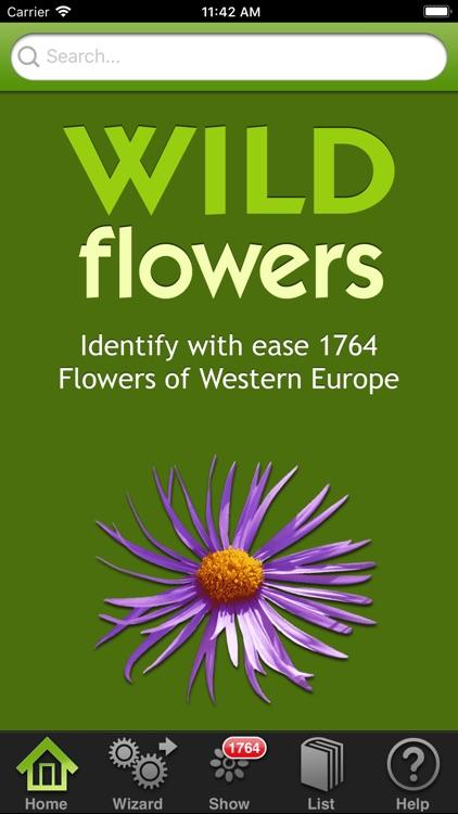 Wild-flowers screenshot-7