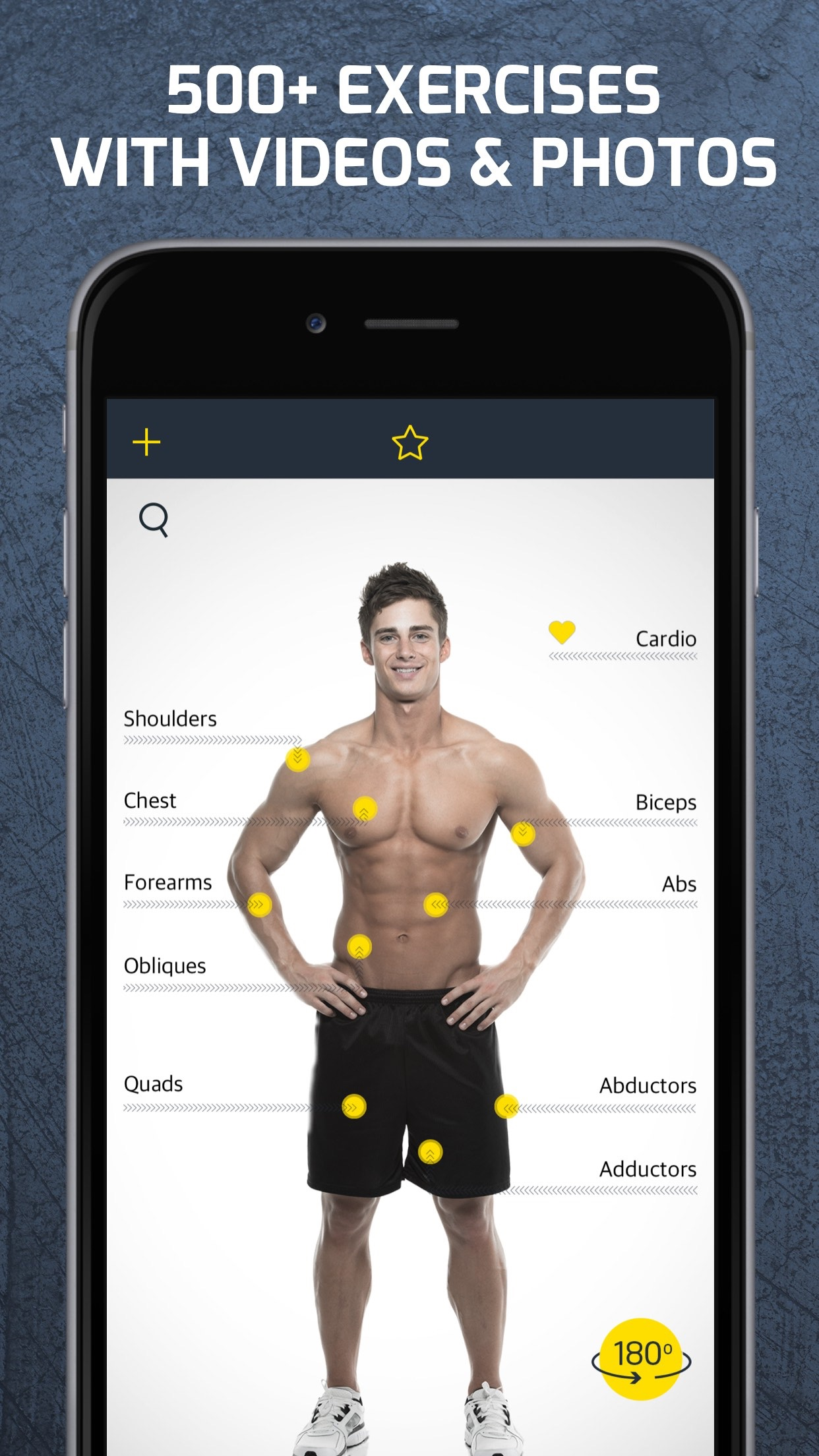 Workout: Gym routines planner Screenshot