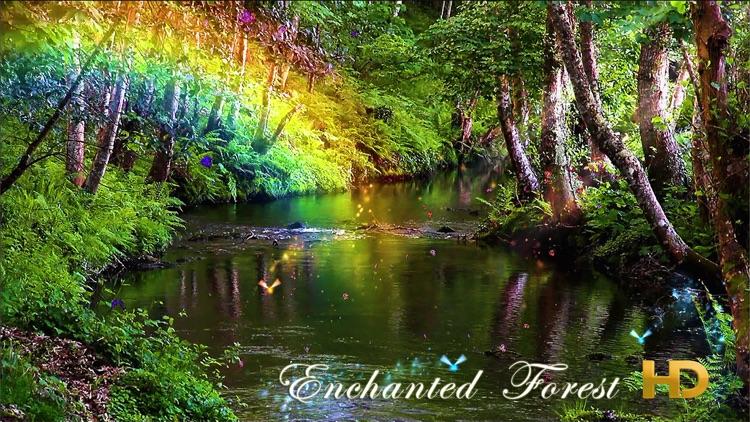 Enchanted Forest HD screenshot-3