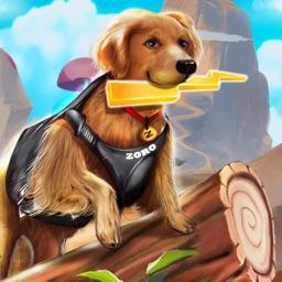 Zoro Pet Dog Race