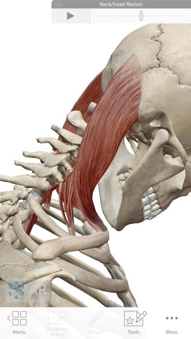 Human Anatomy Atlas 2019 app image
