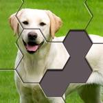 Hexa Jigsaw Puzzle ®