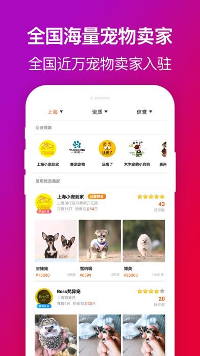 爱宠到家-精品宠物交易平台 app image