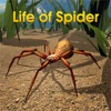 Life Of Spider - iPhoneアプリ
