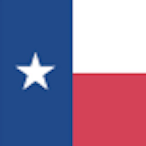 Texas Child Support Calc 2019