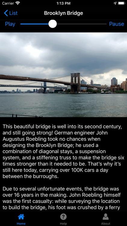 NYC Sights screenshot-8