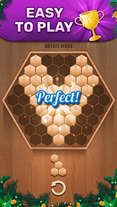 Wooden 100 Block: のブロックパズル ゲームのおすすめ画像4