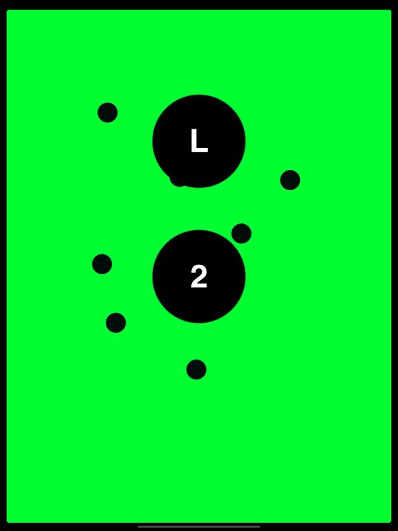 rl-ipad-2