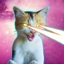 Laser Cats Animated