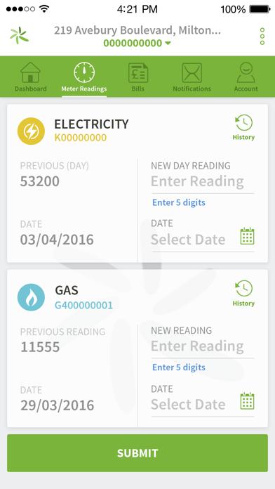 Green Star Energy screenshot three
