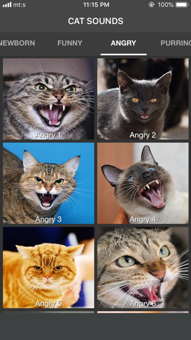 Cat Sounds - ColecciónCaptura de pantalla de6