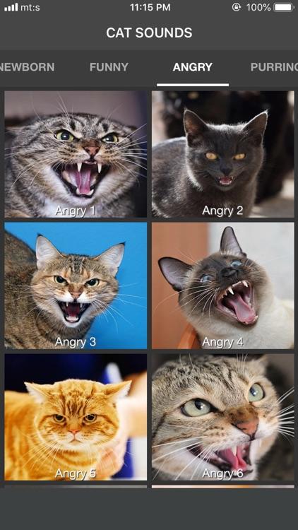 Cat Sounds - Meow Soundboard screenshot-5