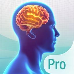 Wissenstraining Pro. Das Quiz