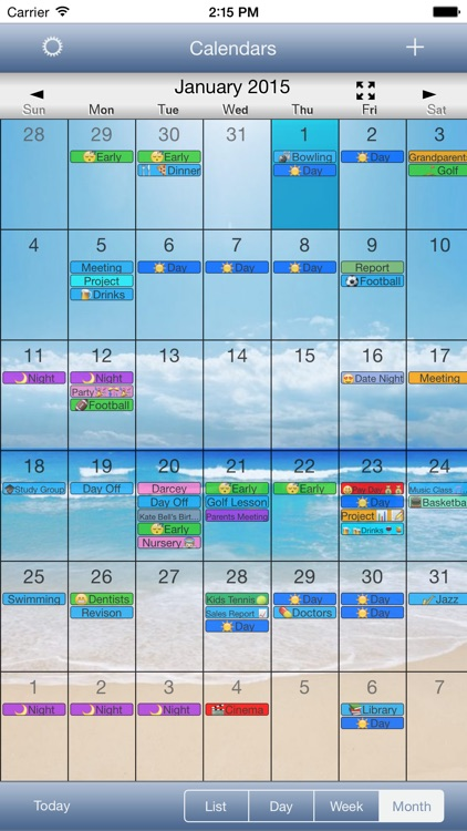 CalendarSkin screenshot-2