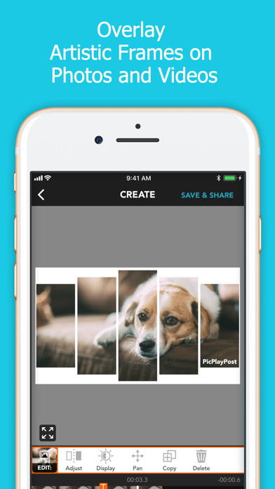 PicPlayPost Movie Video Editor app image