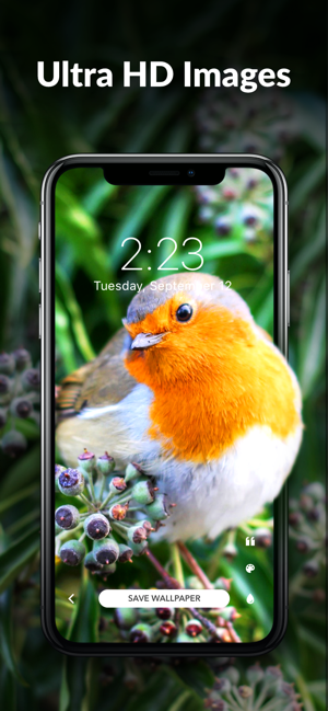 Wallpaper Tree 4k Wallpapers On The App Store