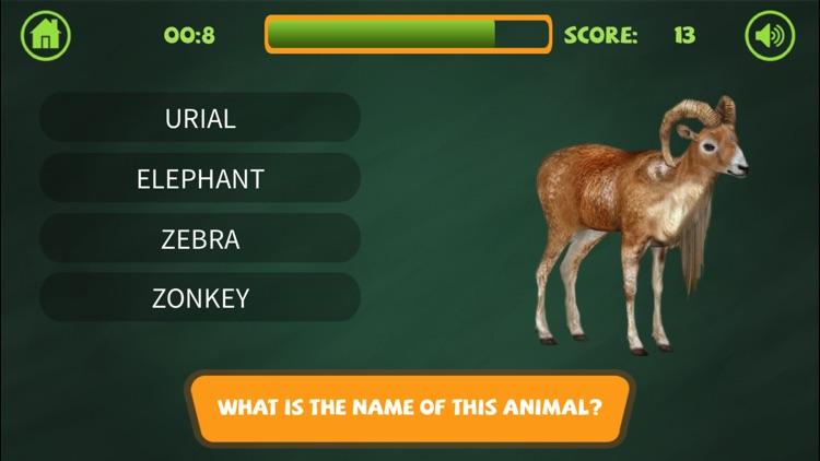 Jungle Learning - Animal Jam screenshot-3