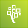 FamilySearch Memories - FamilySearch International